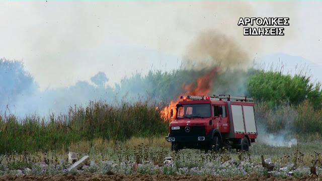 Πυρκαγιά στο Λυγουριό