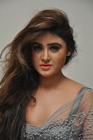 Actress Sony Charistha Latest Pos in Silver Saree at Black Money Movie Audio Launch  0008.jpg