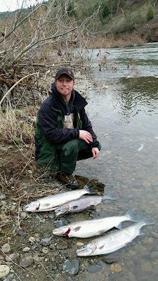 Umpqua river fishing guides