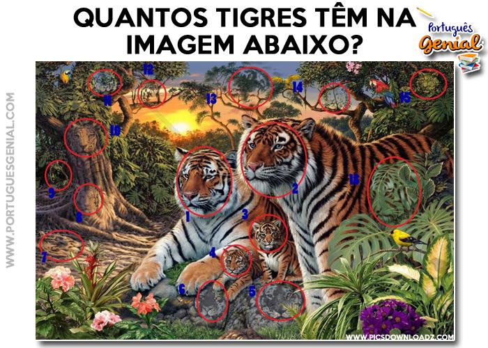 Desafio - Quantos tigres têm na imagem?
