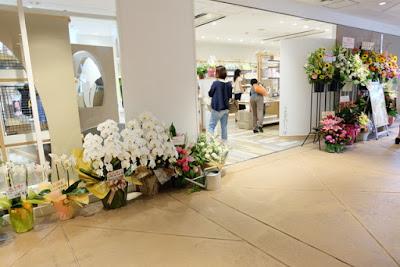 うさぎのしっぽ二子玉川店オープン