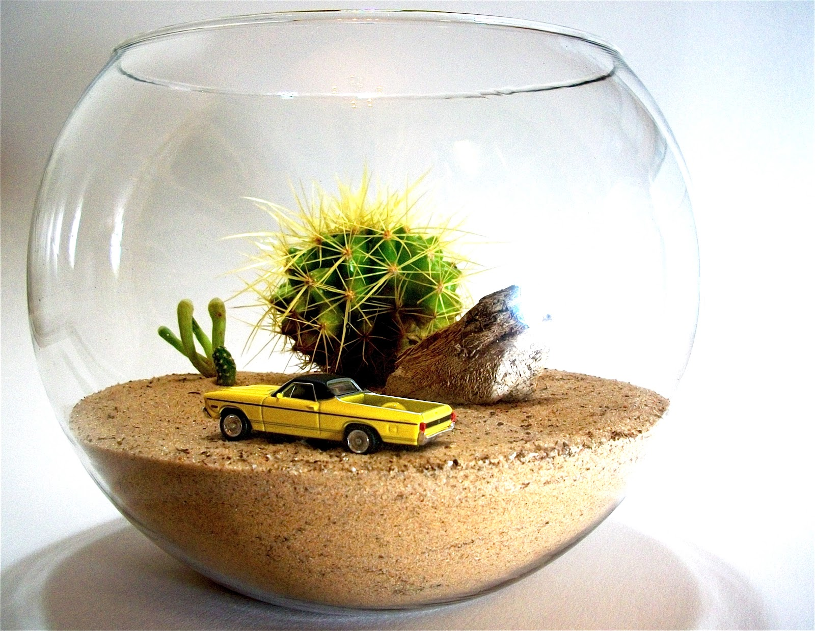 The Dachshund In The Desert El Camino Terrarium