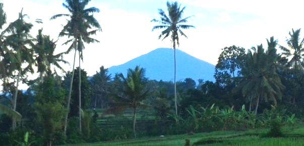 Singaraja North Bali - Taman Ayun, Mengwi, Royal Temple, Bedugul, Candi Kuning, Ulundanu Lake Beratan Temple, Banjar, Lovina, Gitgit Waterfall