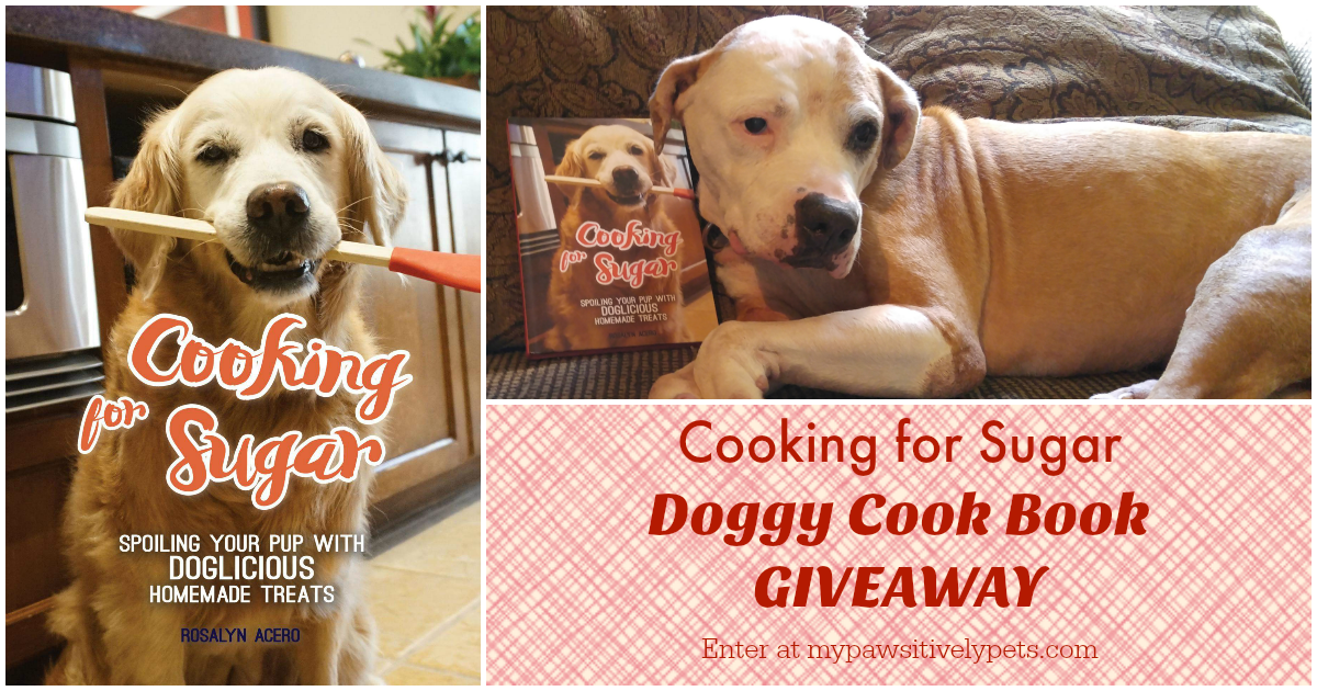 Doggy bloggy giveaways