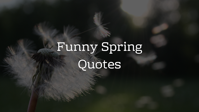 Funny Spring Quotes - Brain Hack Quotes