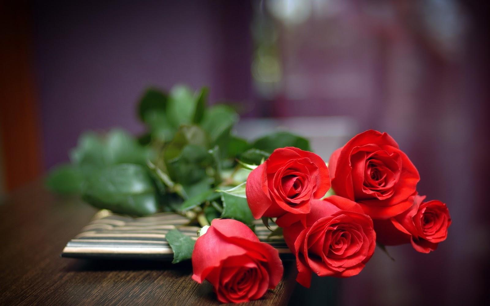 أجمل صور الورود والزهور ملونة