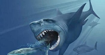 5 Prehistoric Sea Monsters That Will Frighten You | Times ... |Scariest Prehistoric Sea Creatures