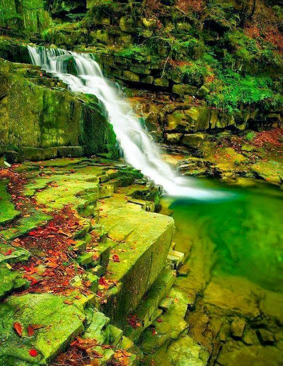 Tanggungjawab Menjaga Alam Dan Hidupan Di Dunia