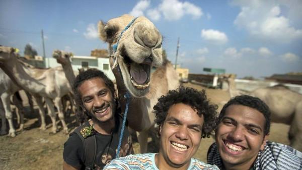 Menteri Nila: Jangan Selfie dengan Unta
