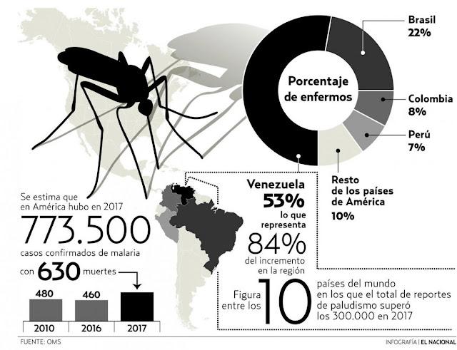 """El régimen de Maduro es """"responsable del aumento y expansión de epidemia de malaria"""""""