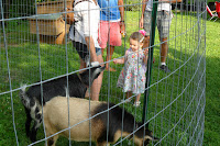 Goats on display at Fourth of July picnic