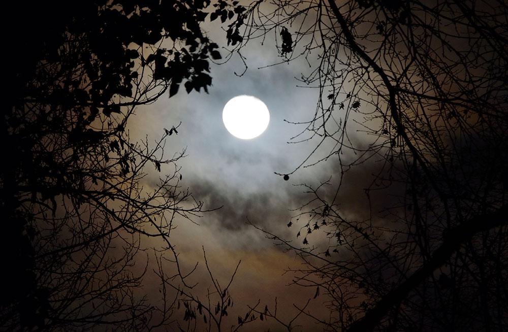 Clair de Pleine Lune Clair-de-lune