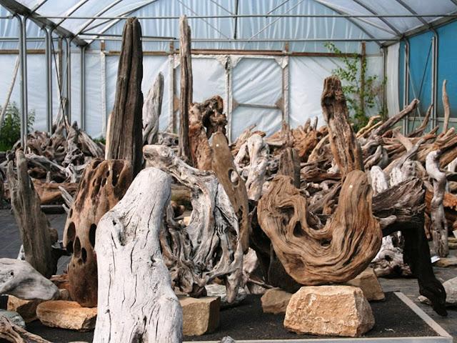 driftwood sculpture ideas
