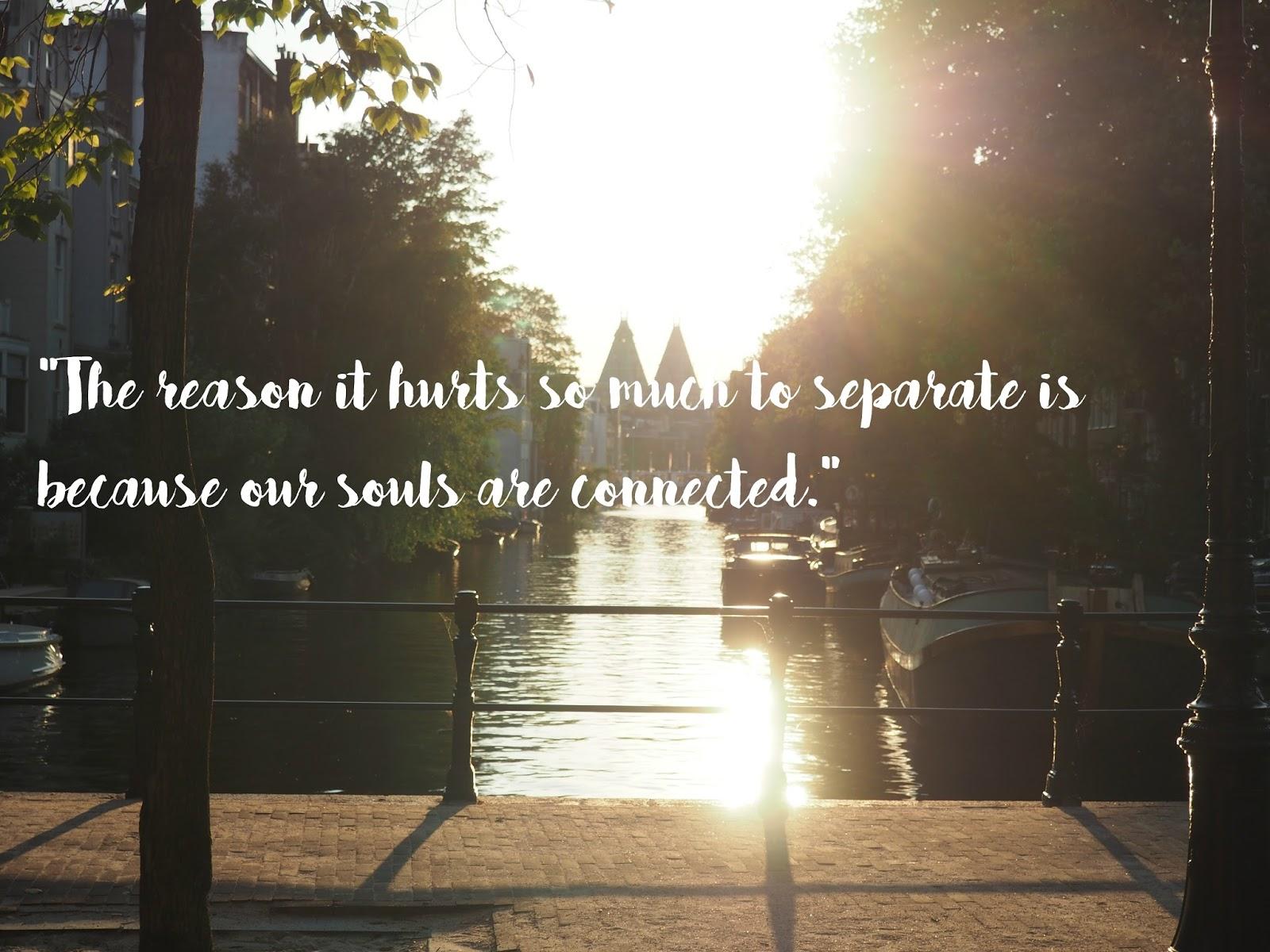 Schönste Zitate von Nicholas Sparks - Quotes from Nicholas