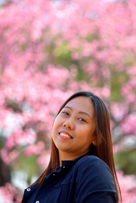 Girl Travel and Pink Cherry Blossoms