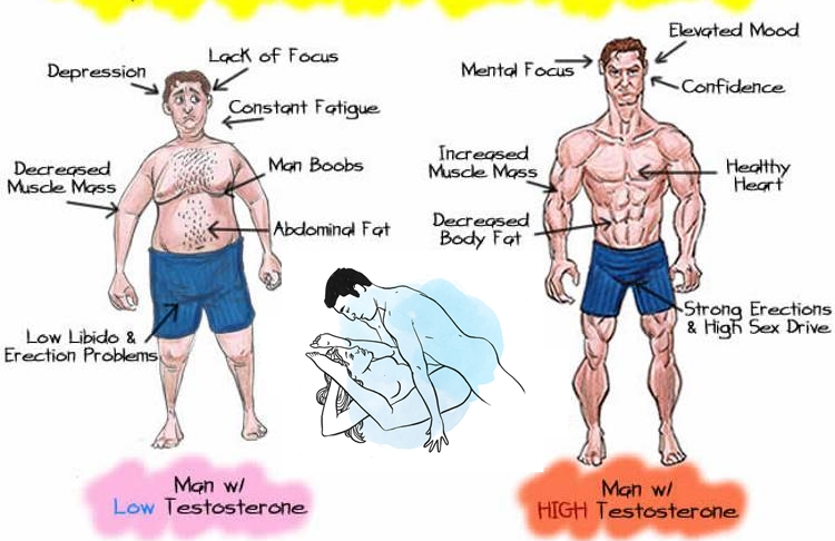 How To Raise Testosterone In Men