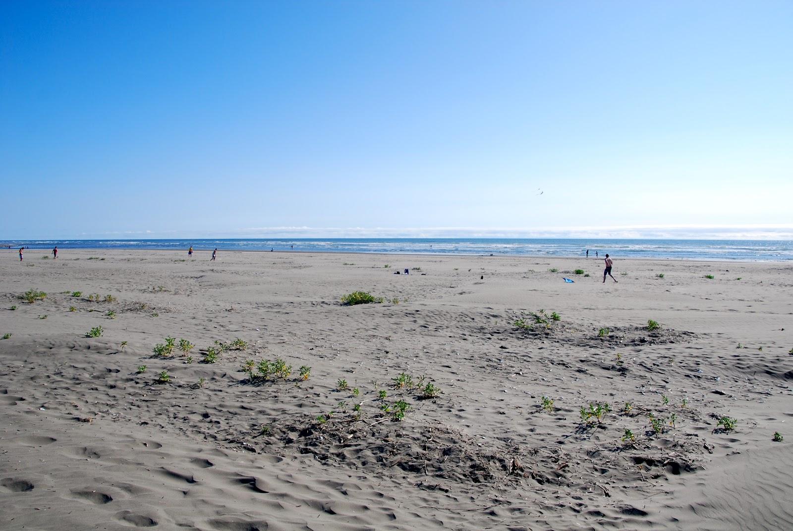 Panoramio - Photo of Pacific Beach State Park trail to the ... |Pacific Beach State Park