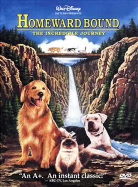 Homeward Bound The Incredible Journey (1993) – 2 หมา 1 แมว ใครจะพรากเรา ไม่ได้