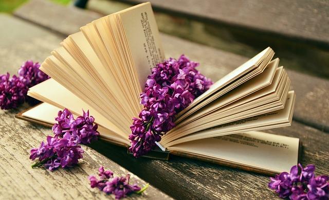 3 książki, które warto przeczytać w październiku i 2, które można