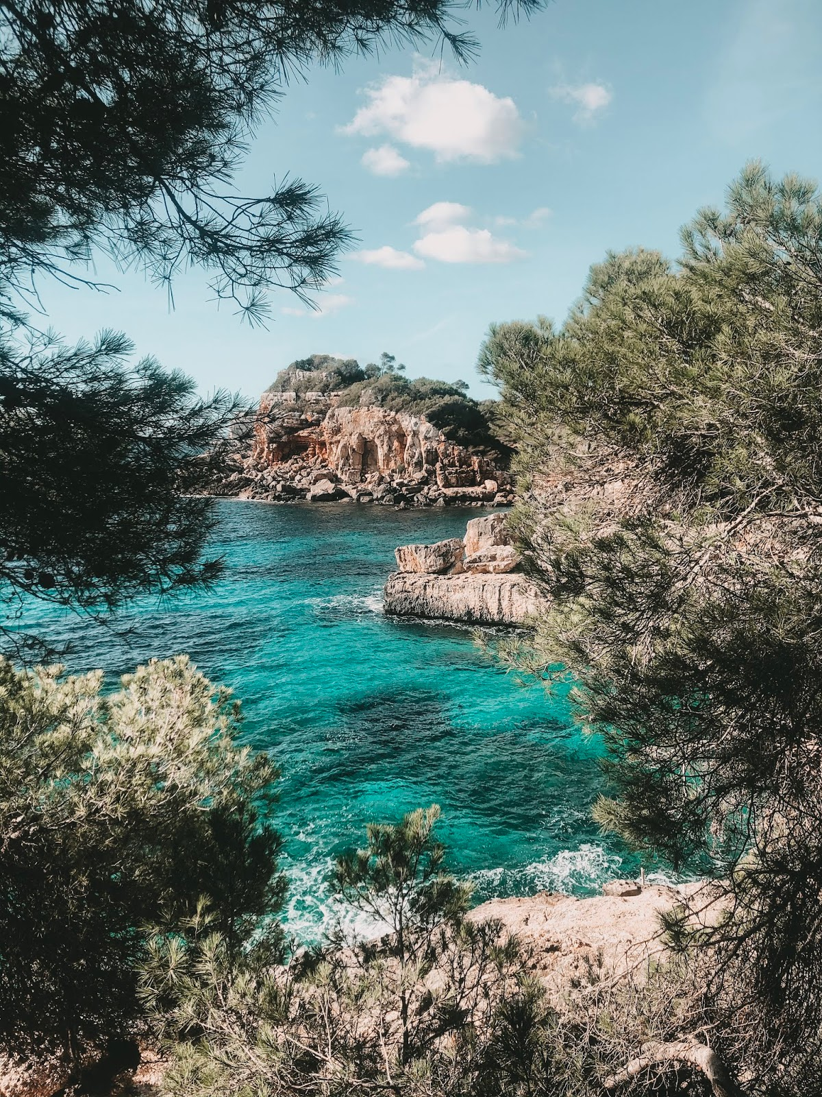 Mallorca Travel Guide: Must Do See