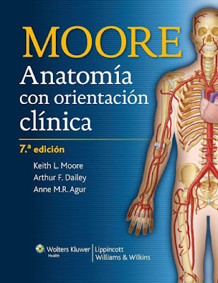 Portada Anatomía moore 7 azul