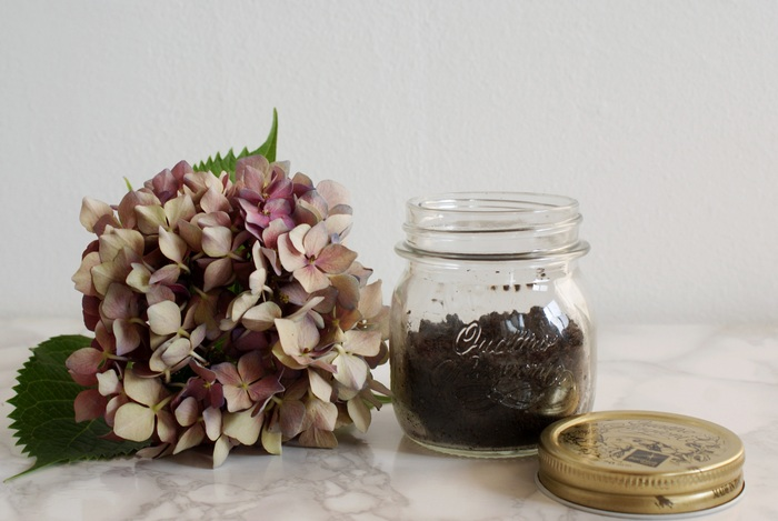 diy body coffee scrub francinesplaceblog