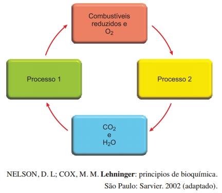 Lehninger: principios de bioquímica.