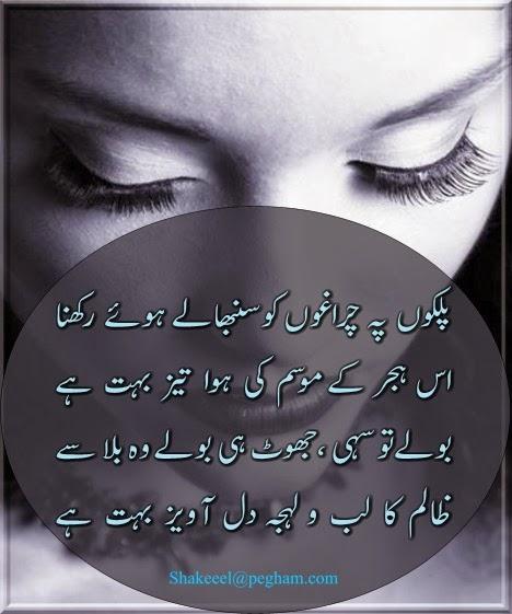 Dil Meaning Urdu - 0425
