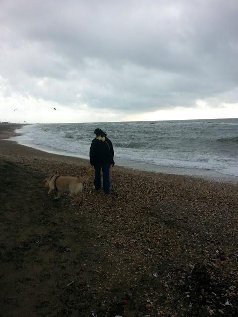 Una spiaggia e Alice a passeggio