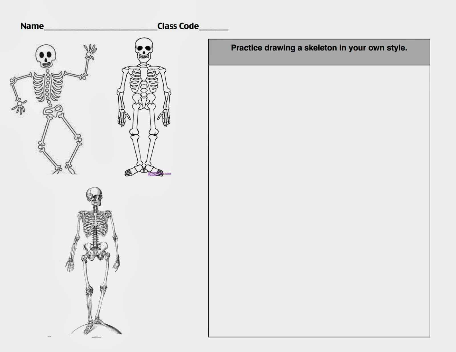 Build A Skeleton Worksheet   Printable Worksheets and Activities for  Teachers [ 1236 x 1600 Pixel ]