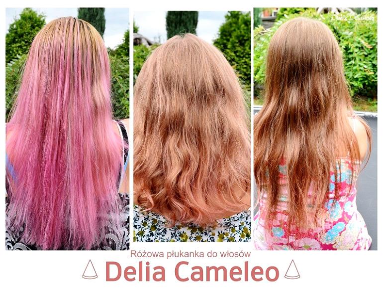 Płukanki do włosów Cameleo Delia - fioletowa, srebrna i różowa recenzja