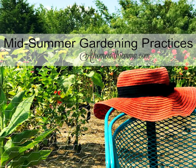 Gardening-garden-organic-tips-sprays-preparation-Jemma