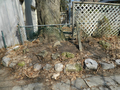 Riverdale Spring Cleanup Before by Paul Jung Gardening Services--a Toronto Organic Gardening Company