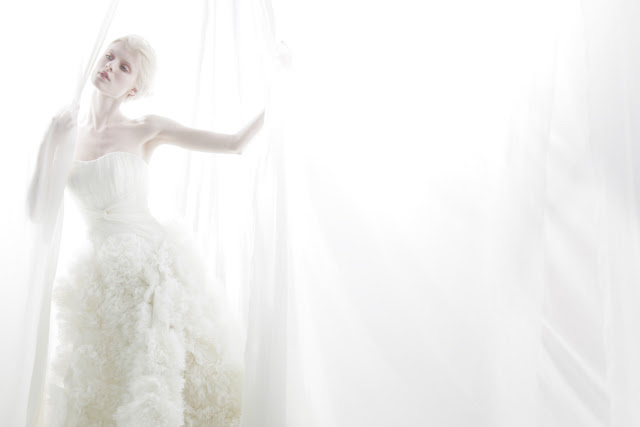 Cheap Wedding Dresses To Rent: Wedding Gowns