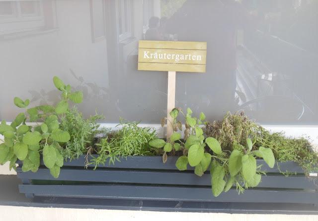 Gasthof zur Waldbahn, Zwiesel, herb garden