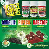 Obat Herbal Alami Gonore yang Bisa Anda Buat di Rumah