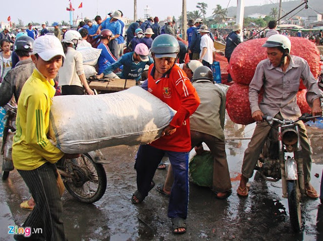 Chợ tỏi 4h sáng trên đảo Lý Sơn - Hình 11