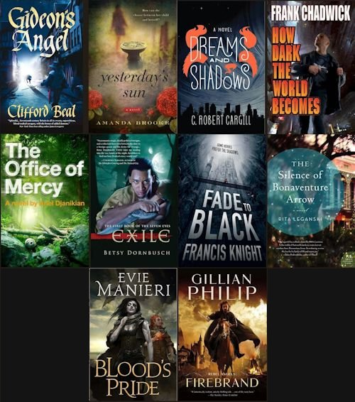 2013 Debut Author Challenge Cover Wars - February 2013 Winner