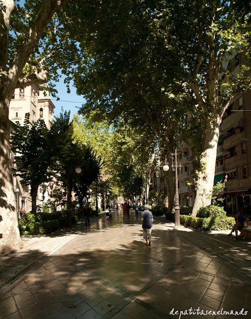 Carrera de la Virgen de Granada