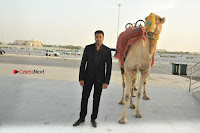 SIIMA 2017 Abu Dhabi Press Meet Stills  0006.JPG