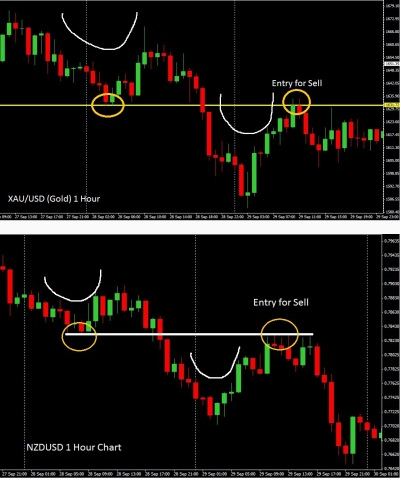 Pip milking strategy forex factory
