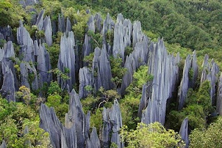 Places Gunung Mulu National Park