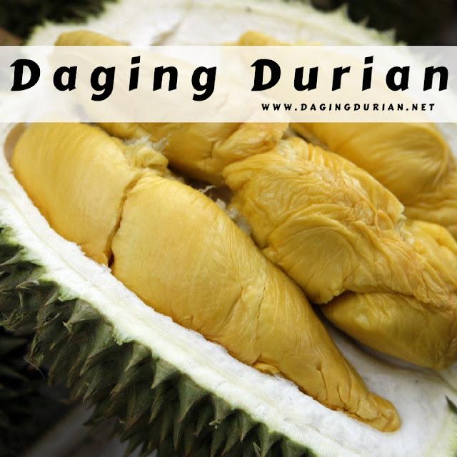 beli-disini-daging-durian-medan-frozen-di-curup