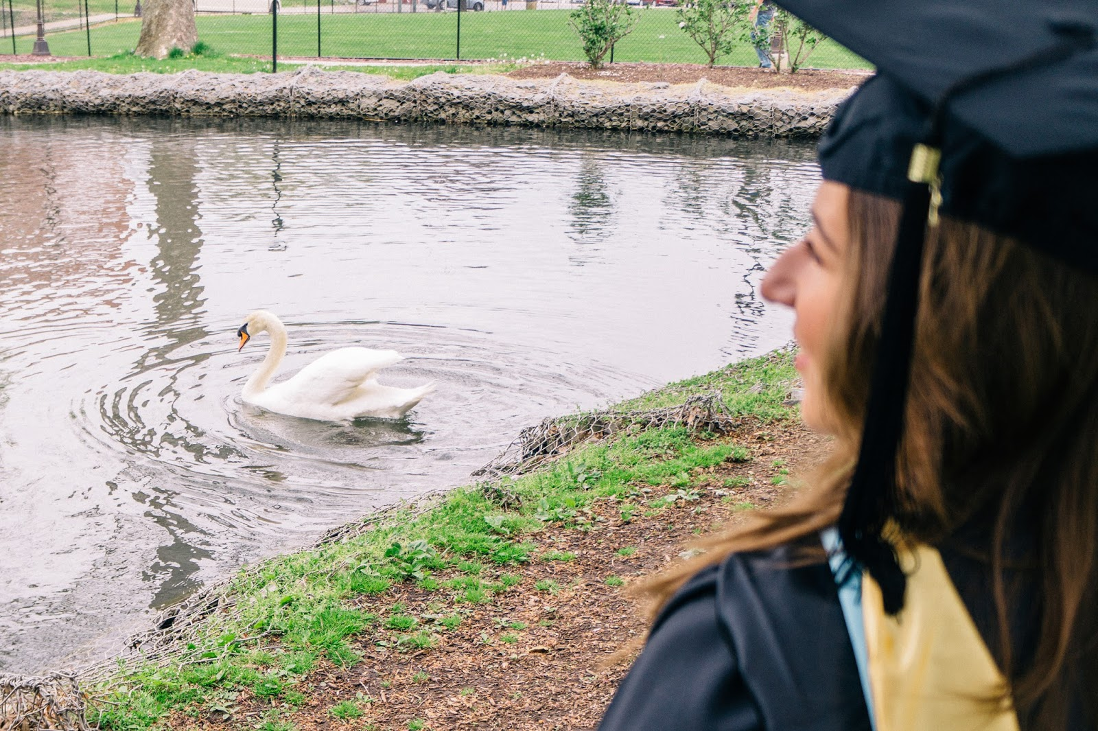 Graduate in front of a pond with a swan swimming by.