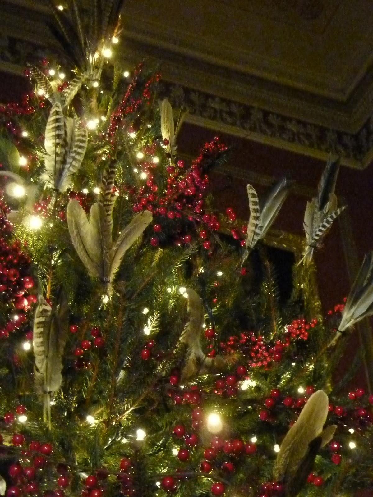 Christmas Tree In Deer Park