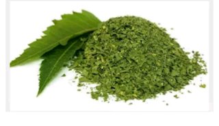 Neur leaf use, allergic reactions, allergic reactions, natural ways to prevent allergy