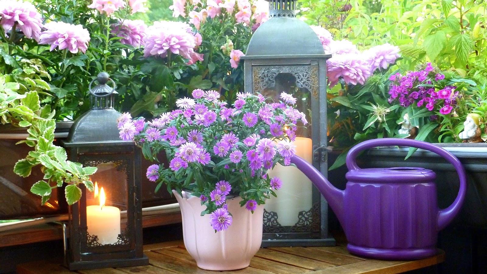 Sul terrazzo, piantando fiori e curando me stessa • Viaggi, Luoghi ...