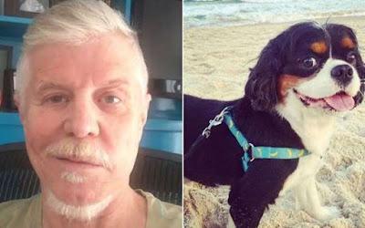 faleceu seu cão de estimação