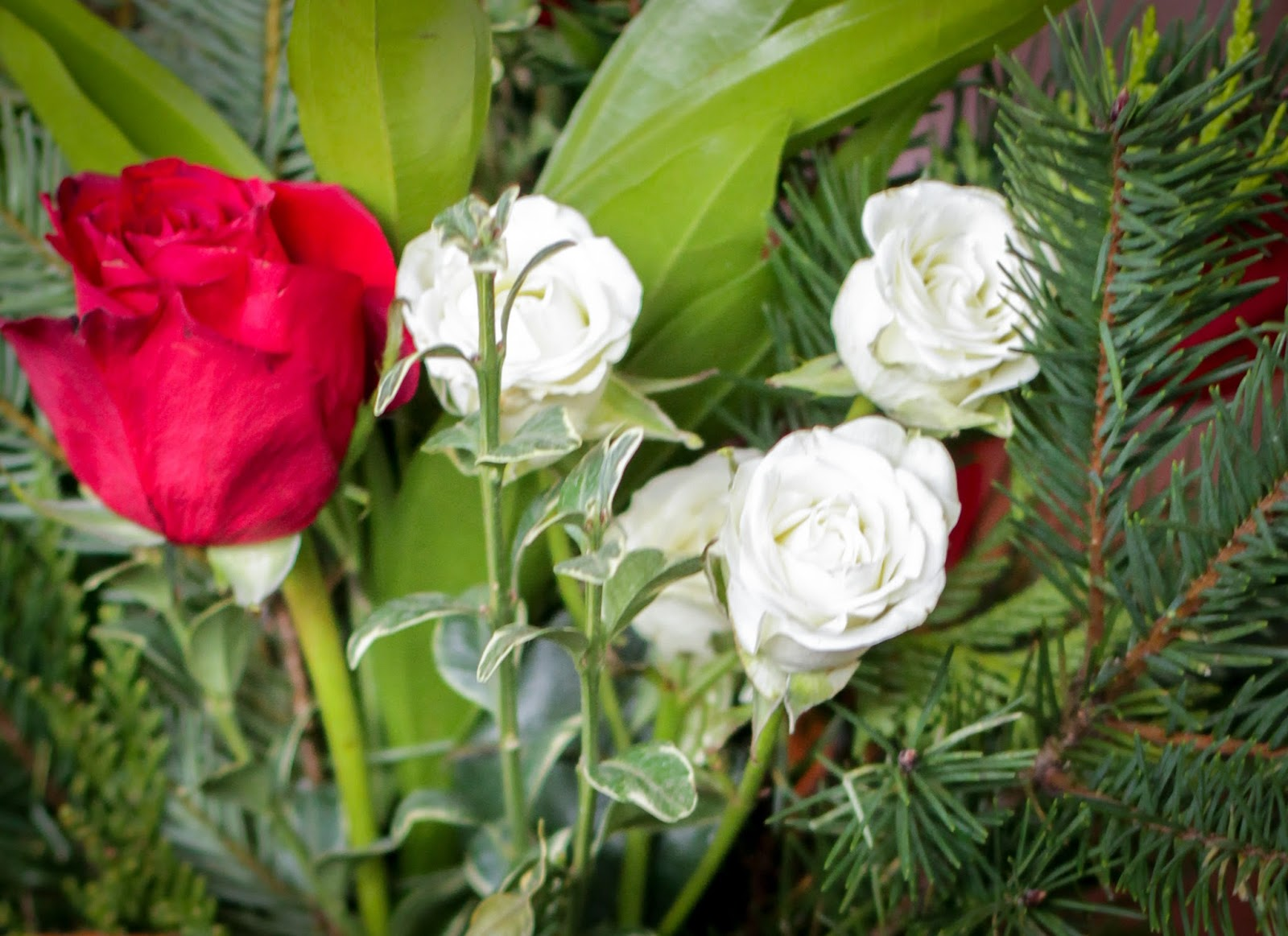 Where Your Treasure Is Fresh Flowers In Winter