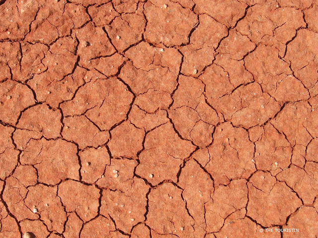Dried out red earth with hundreds of cracks running through it like a landscape.